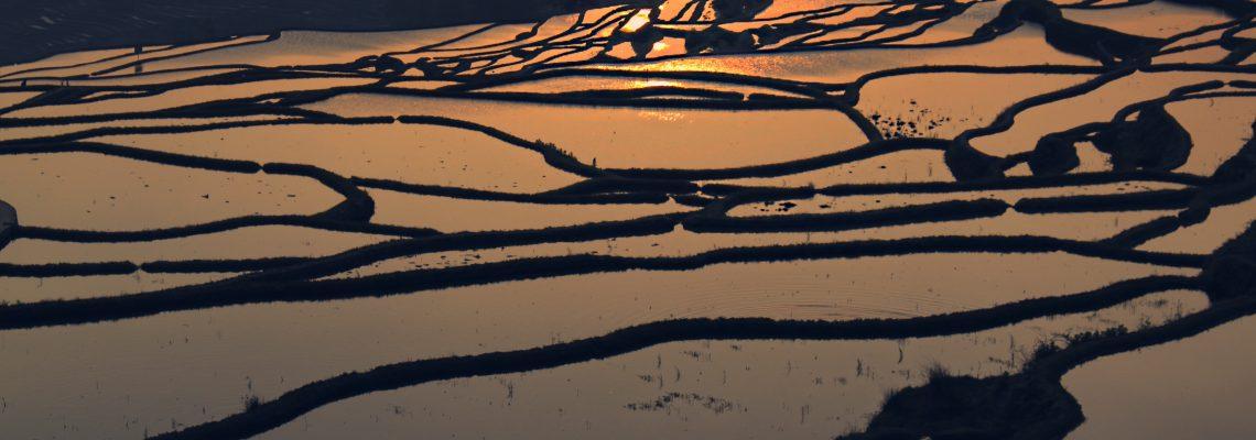 元阳梯田:大自然的调色盘