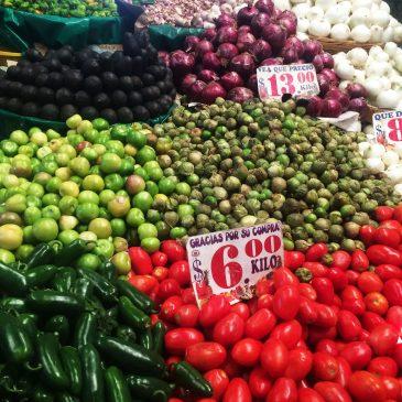 瓦哈卡(三):龙舌兰及食物